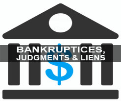 Bankruptcy Court Records